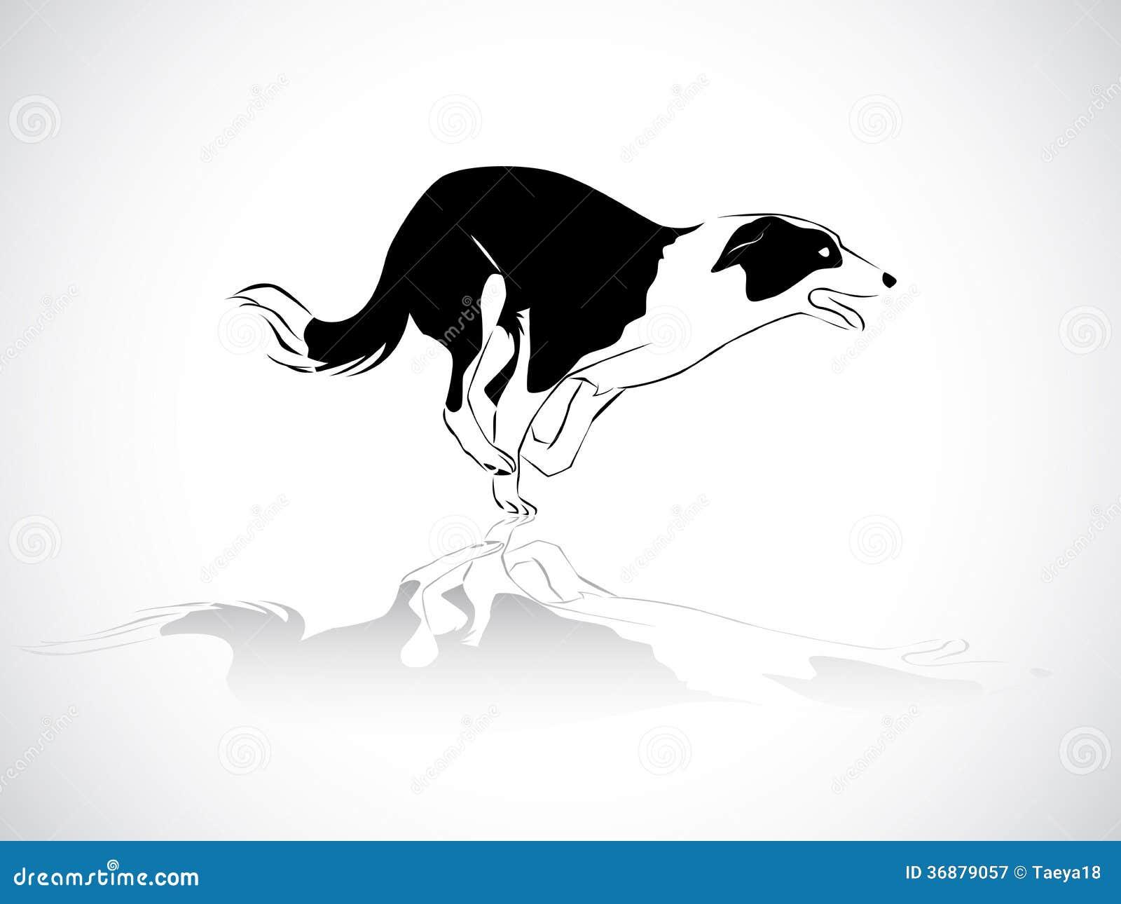 Download Funzionamento Del Cane Da Pastore Illustrazione di Stock - Illustrazione di animale, siluetta: 36879057