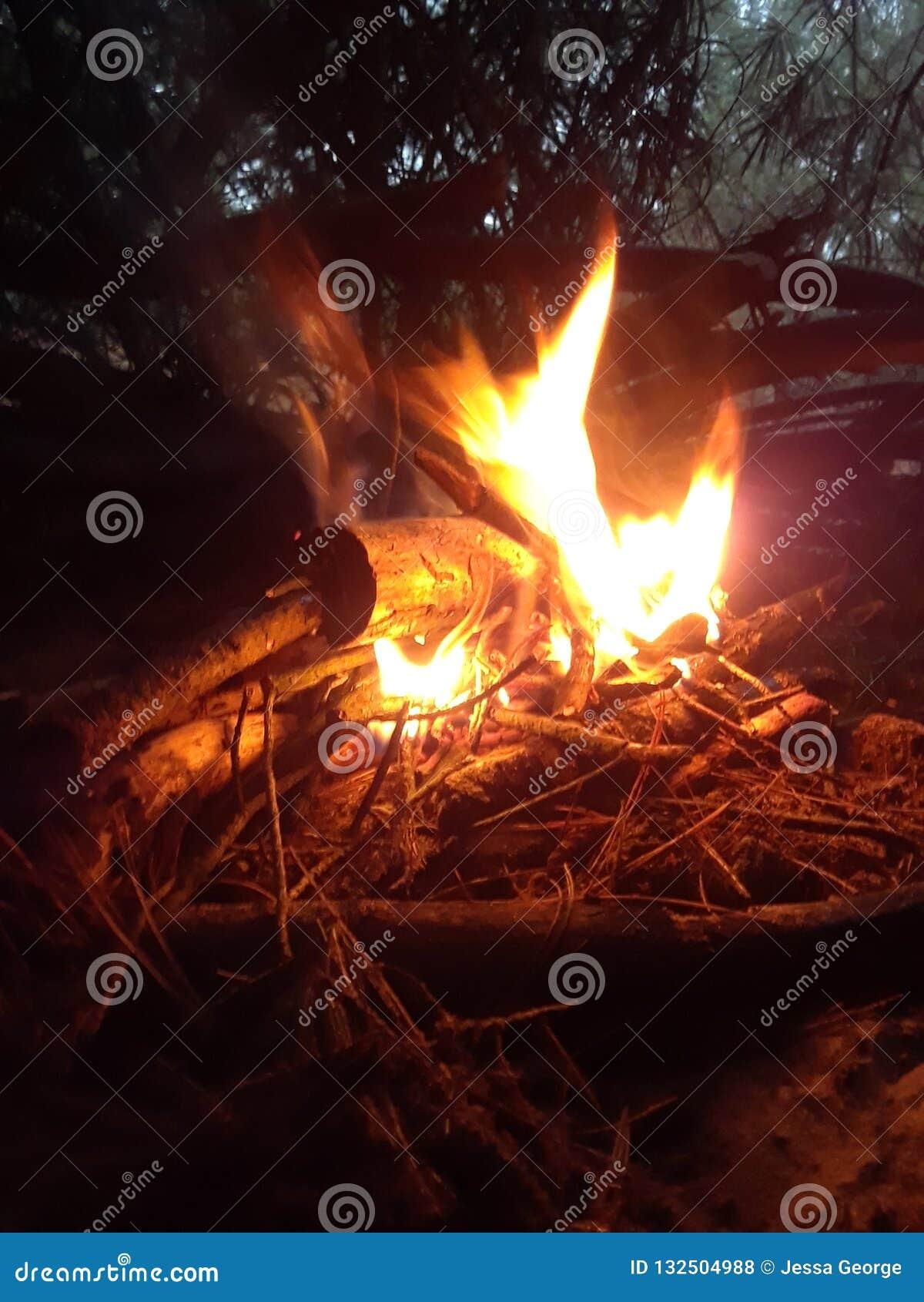Fuoco di accampamento nel legno