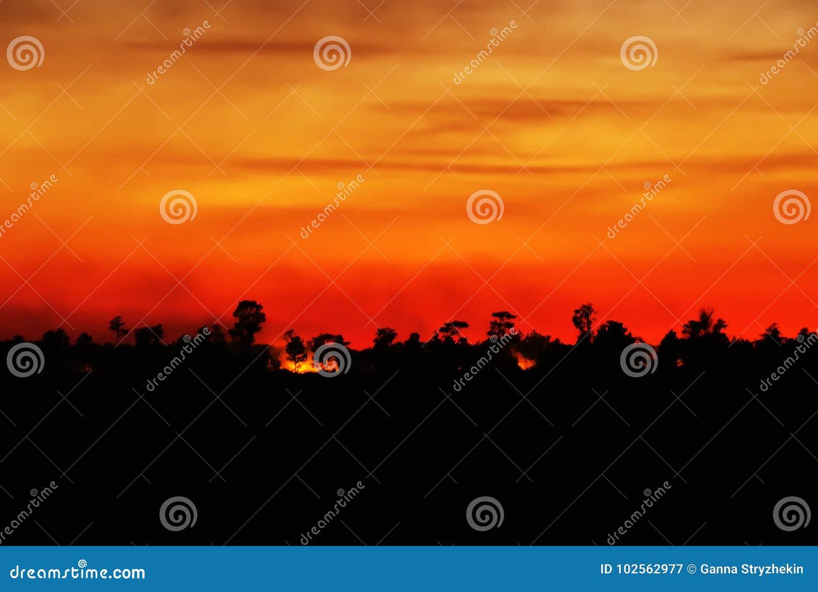 Cielo Rosso Di Notte.Fuoco Di Notte Nel Cielo Rosso Nello Scuro Siluette Di Tramonto
