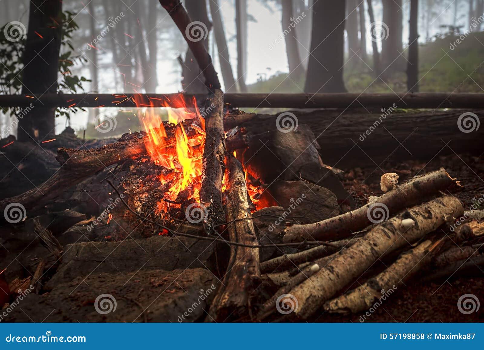 Fuoco in legno nebbioso