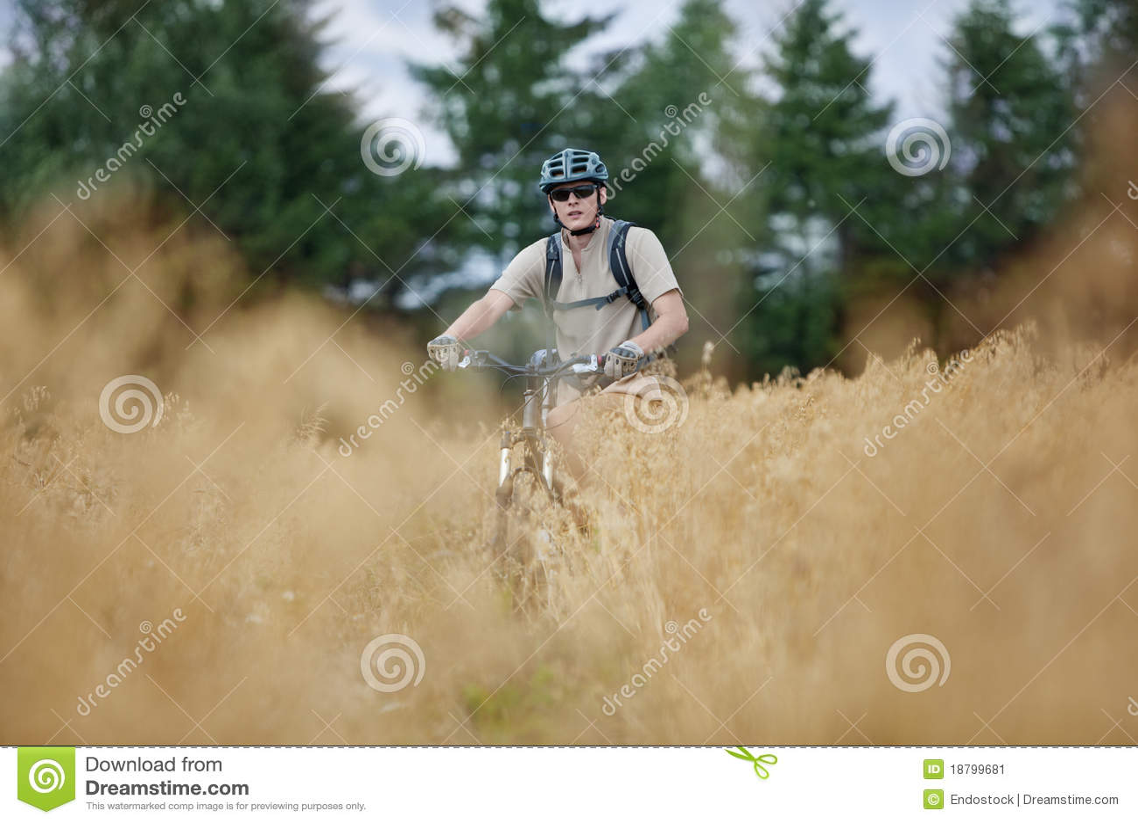 Fuori dall avventura biking della strada
