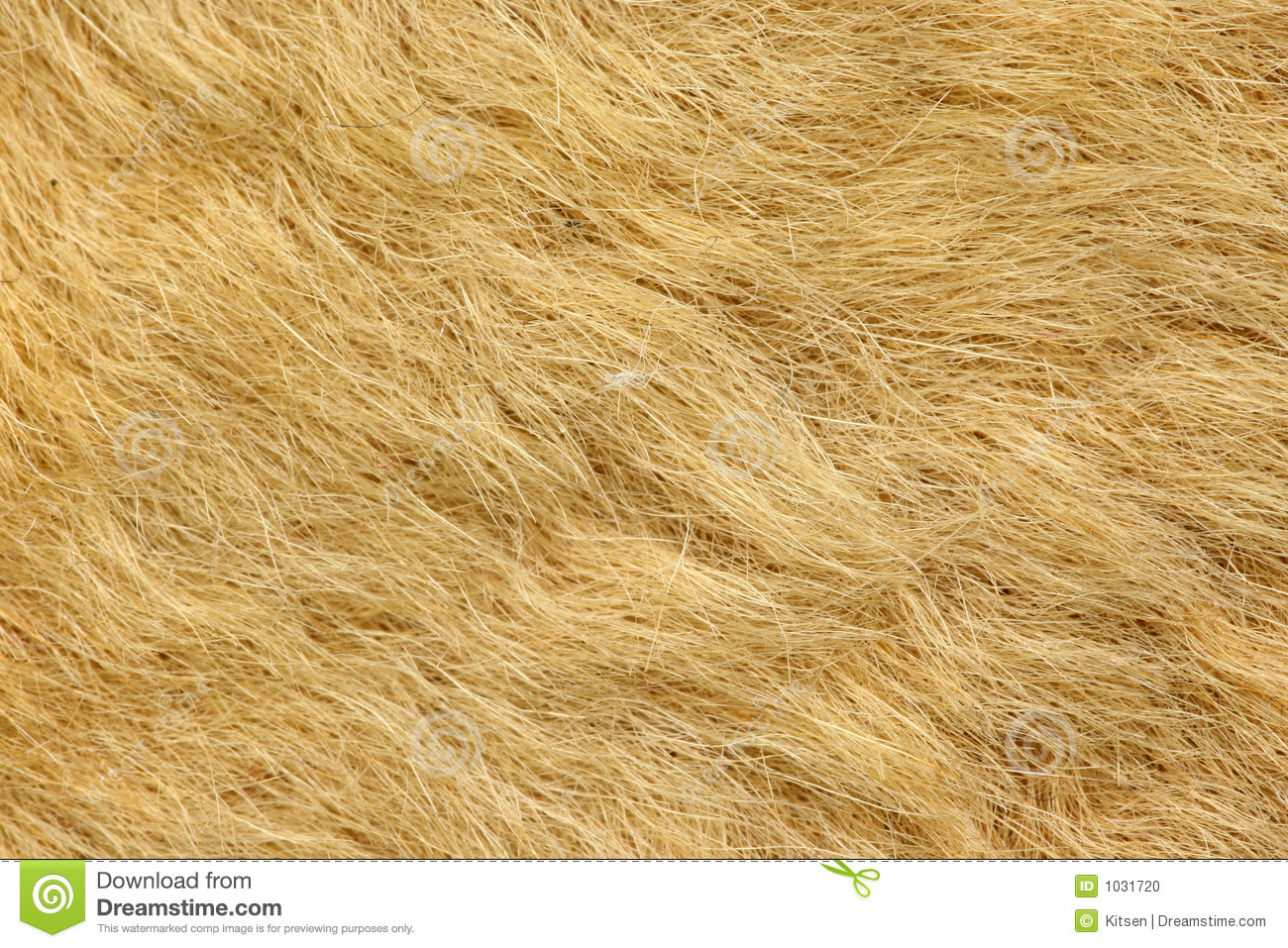Fur On Kangaroo Rug Stock Photo Image 1031720