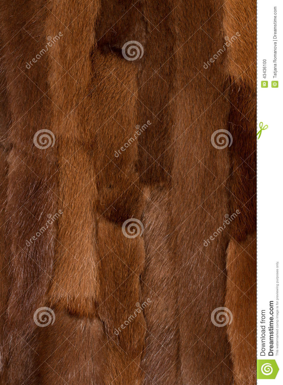 Fur texture background