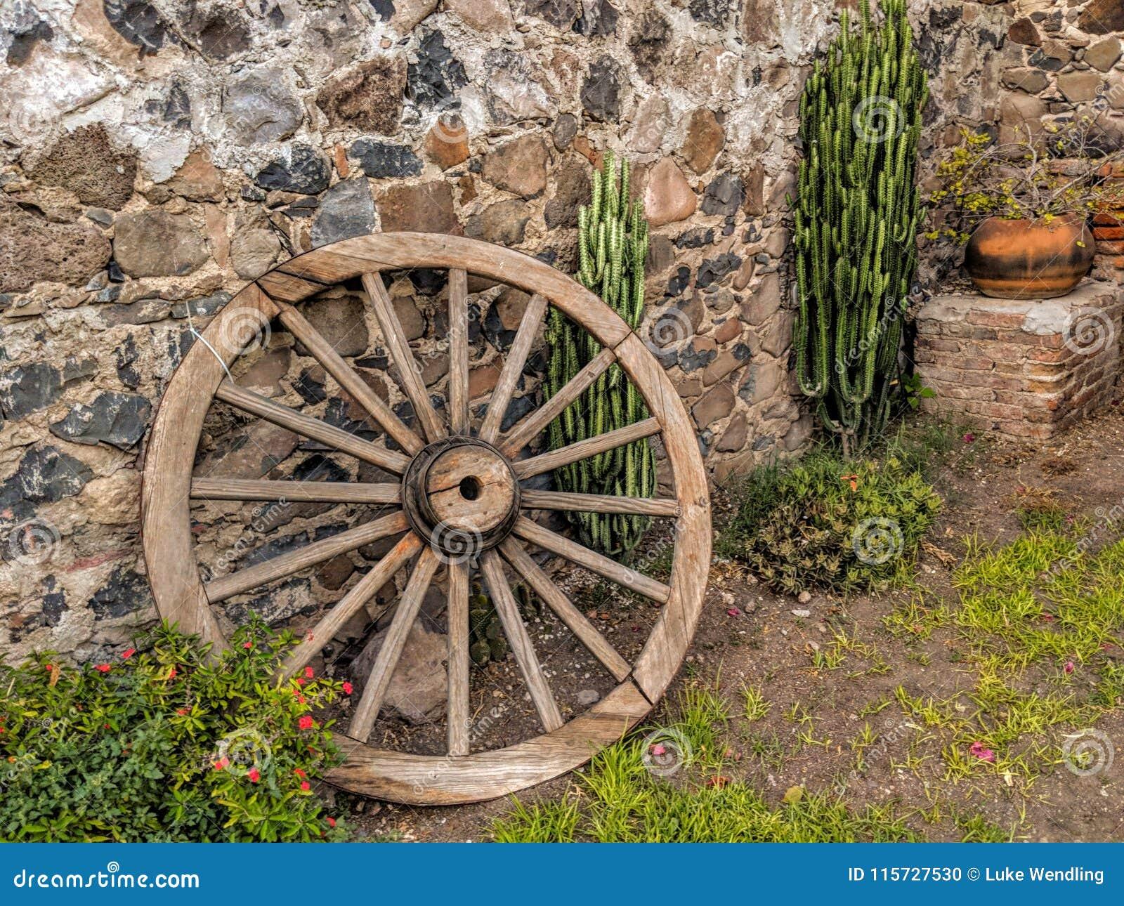 Furgonu kaktus i koło