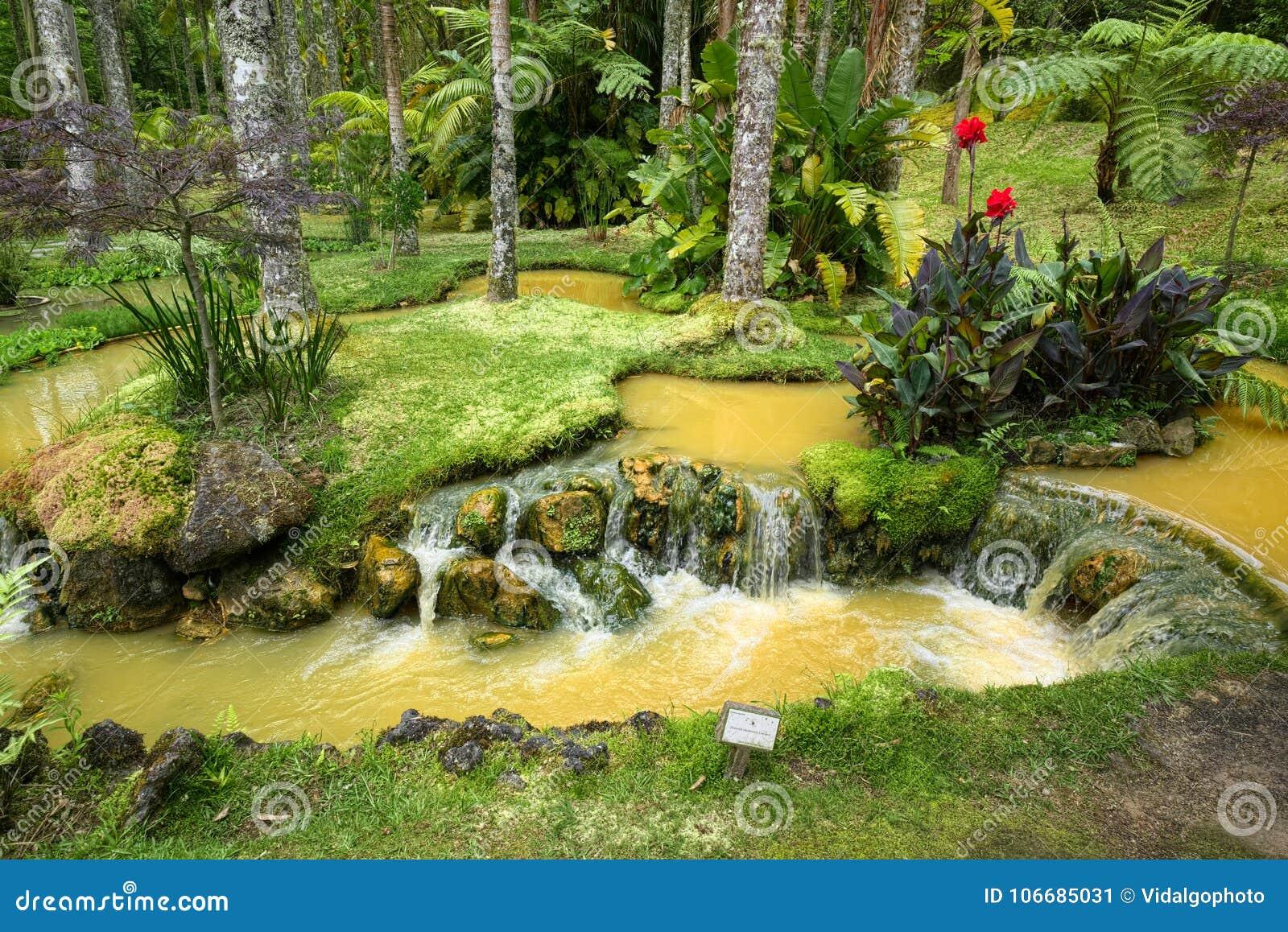 Terra Nostra Garden In Furnas Town Sao Miguel Island Azores