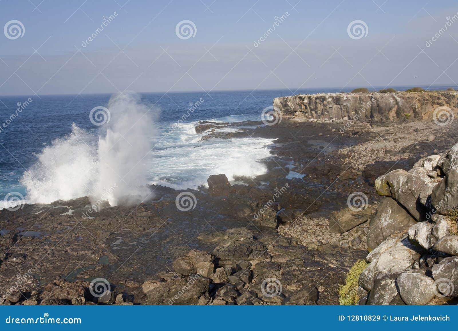 Furo Galápagos do sopro