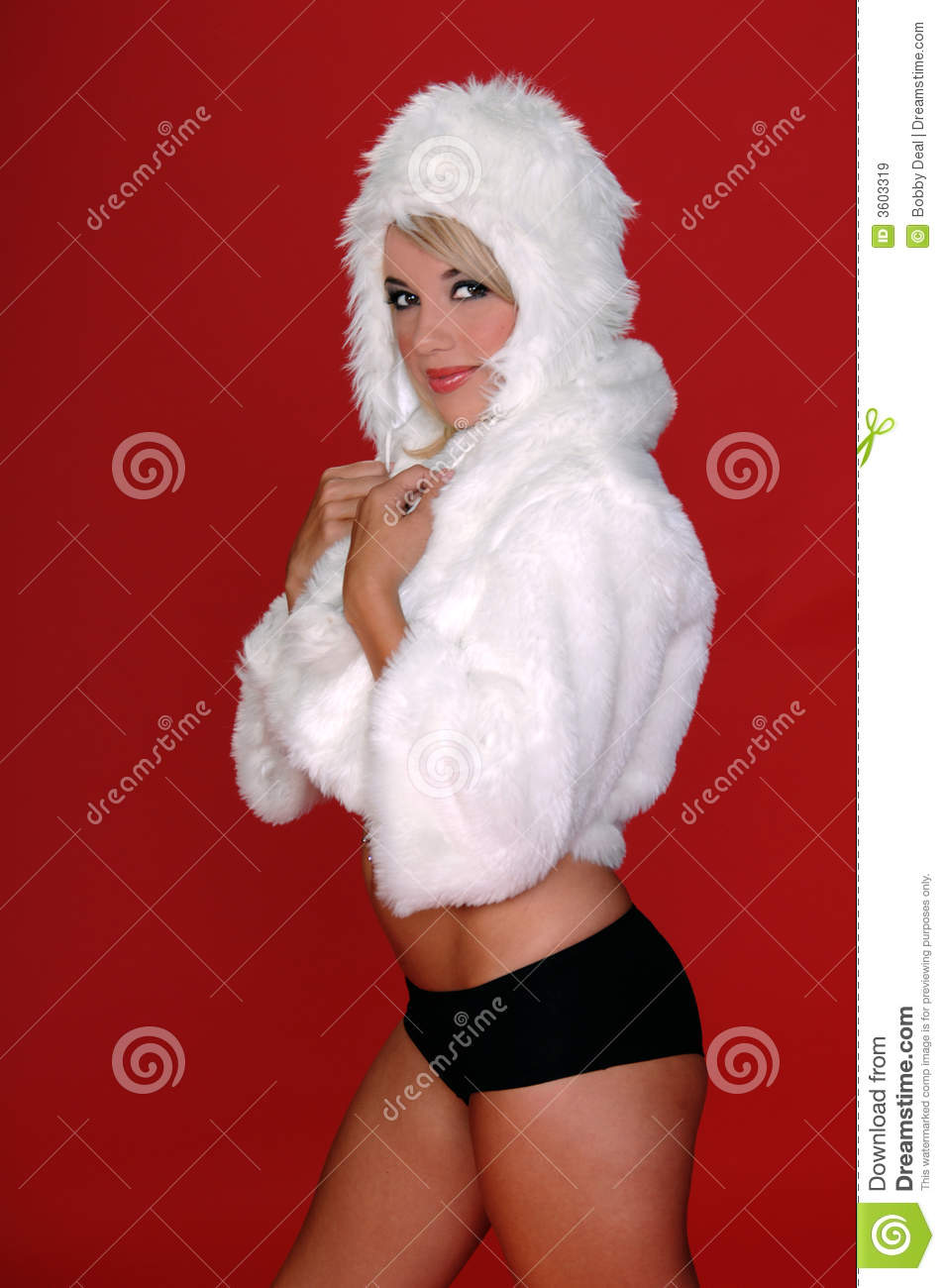 furry snow bunny royalty free stock images image 3603319