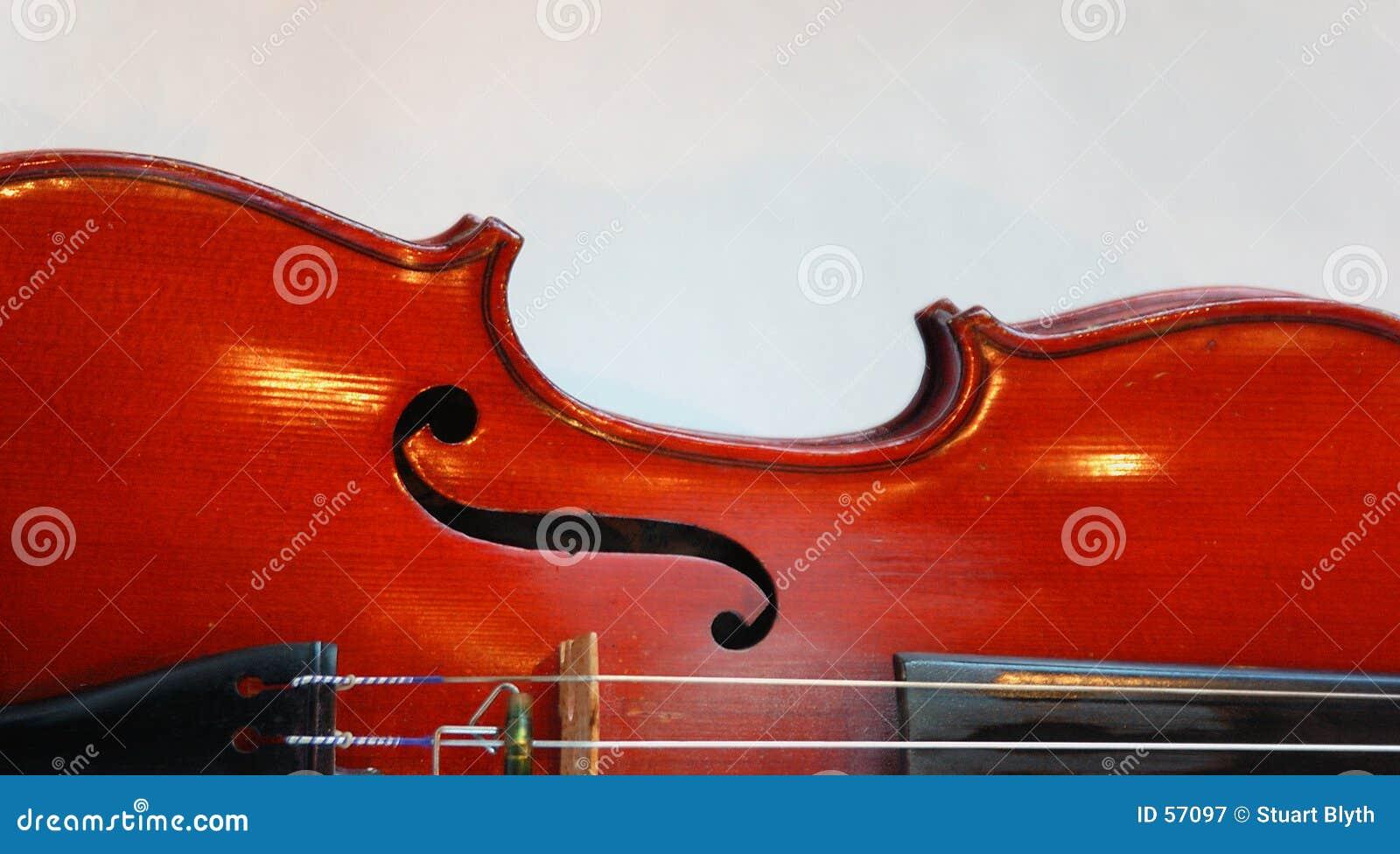 Download Fuselage de violon image stock. Image du instrument, musique - 57097