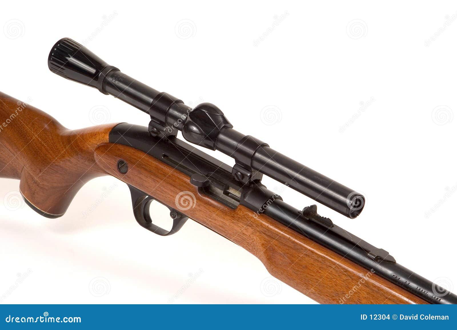 Fusil avec la portée