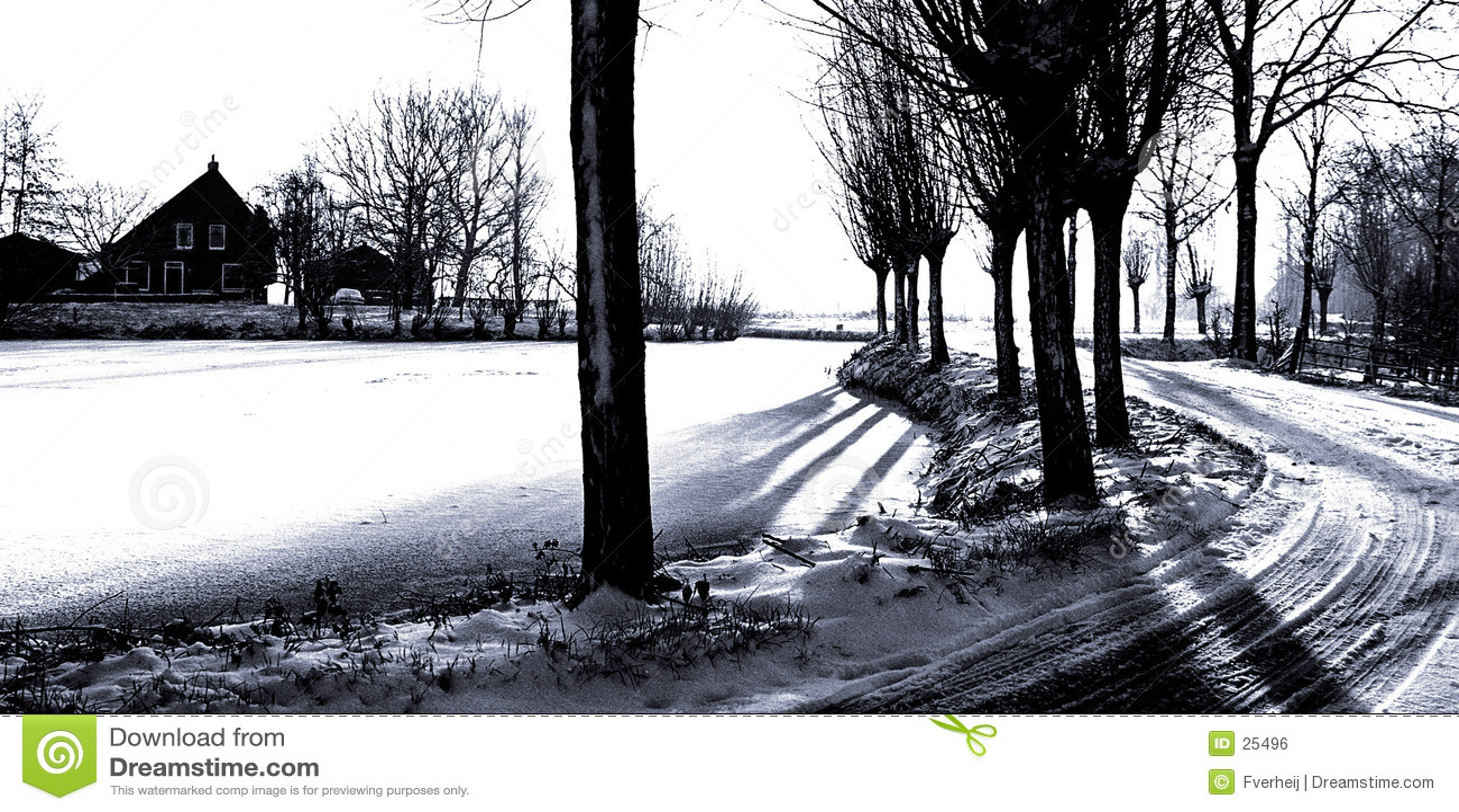 Fv grafiki winterland