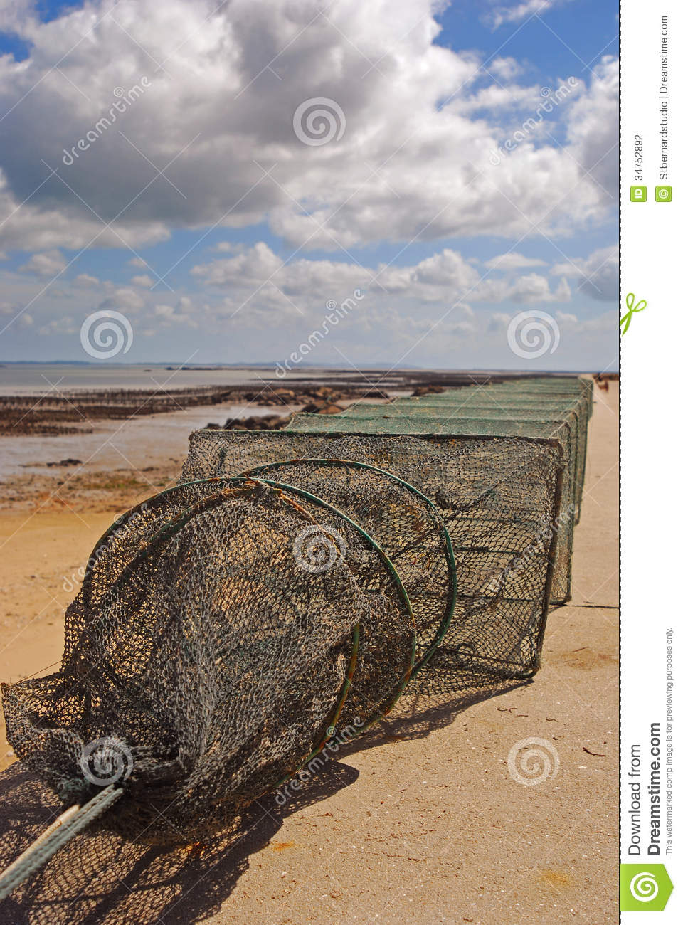 Fyke net are bag shaped which held open by hoops stock for Fishing hoop nets