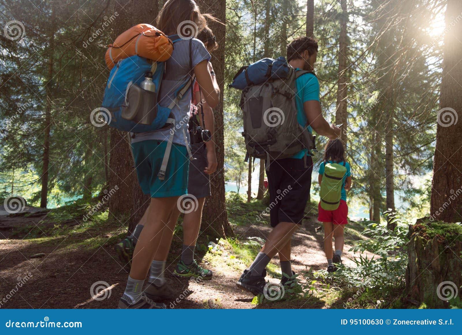 Fyra man och kvinna som promenerar fotvandra slingabanan i skogträn under solig dag Grupp av vänfolksommar