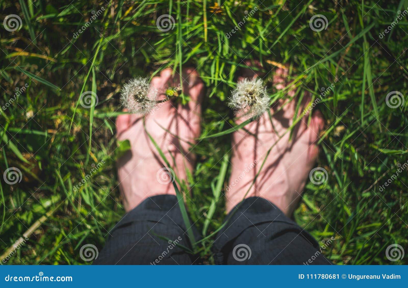 Gå ut och undersök och tyck om naturbegreppet