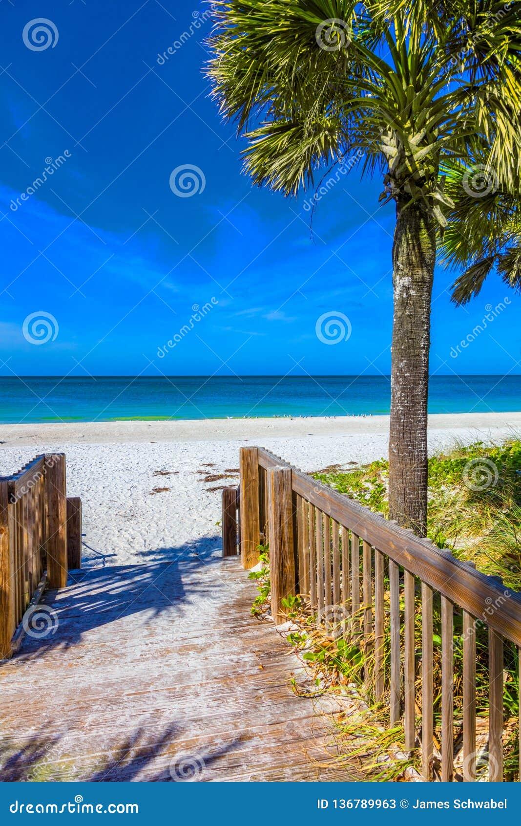 Gångbana som ska sättas på land på Anna Maria Island i Bradenton Florida