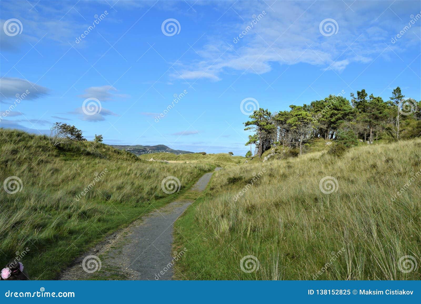Gångbana till stranden i en Forest Park, Co Donegal Irland