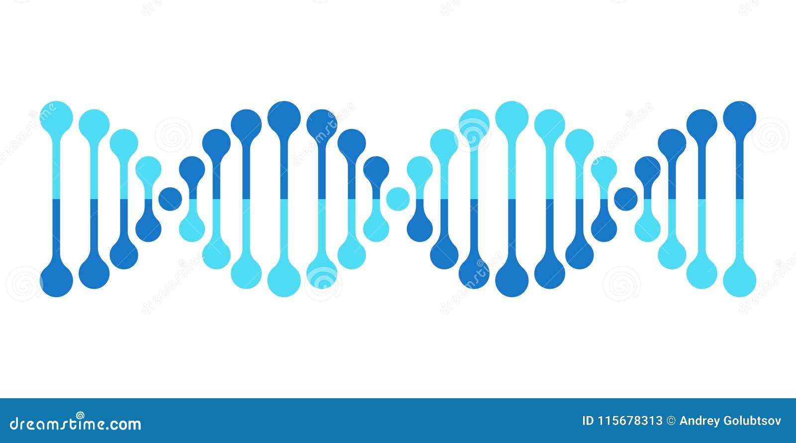Gène d hélice de la génétique de chromosome d icône de vecteur d ADN