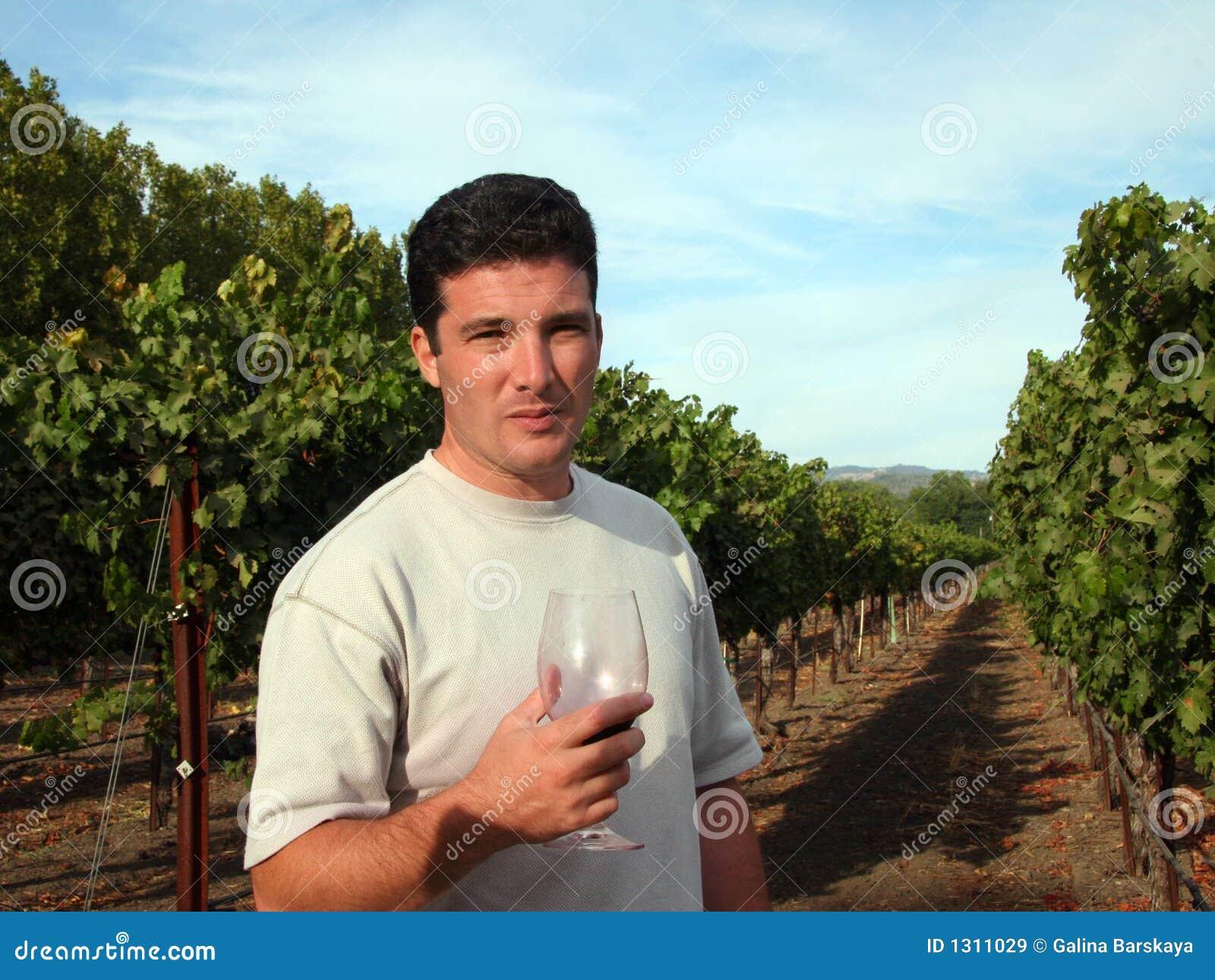Générateur de vin