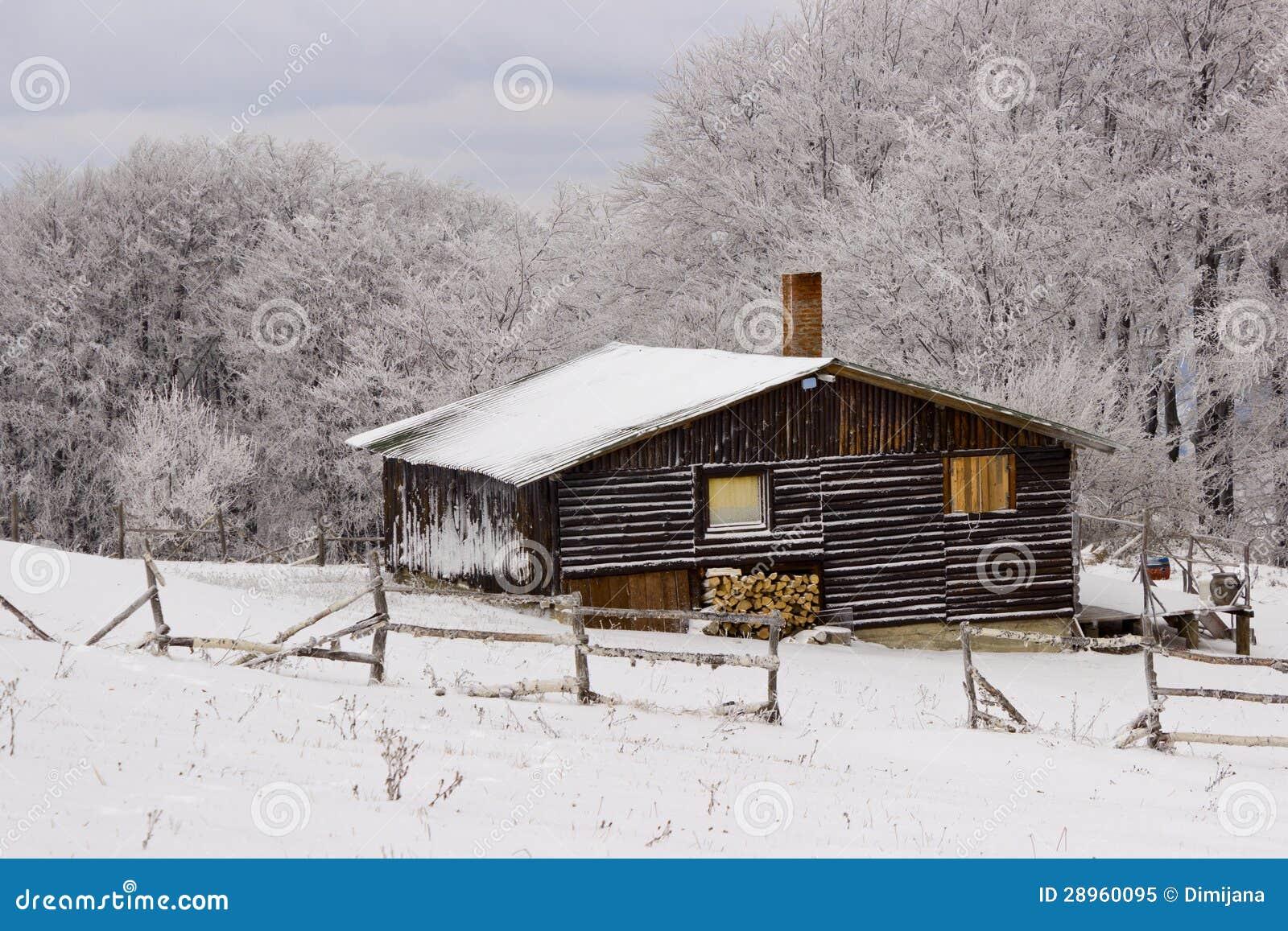 Góra dom, zimy środowisko
