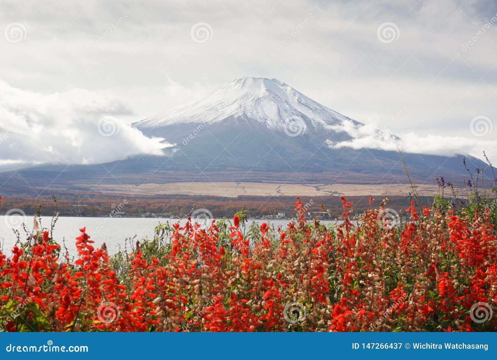 Góra Fuji przy Jeziornym Yamanaka w jesień sezonie Japonia