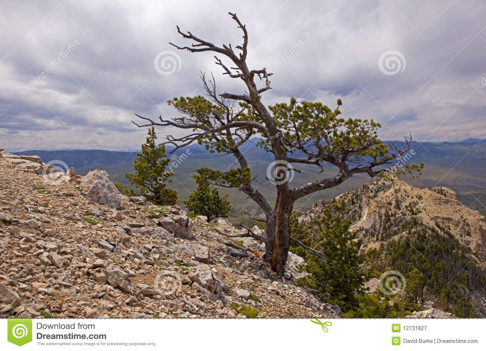 Góra kierowy wierzchołek