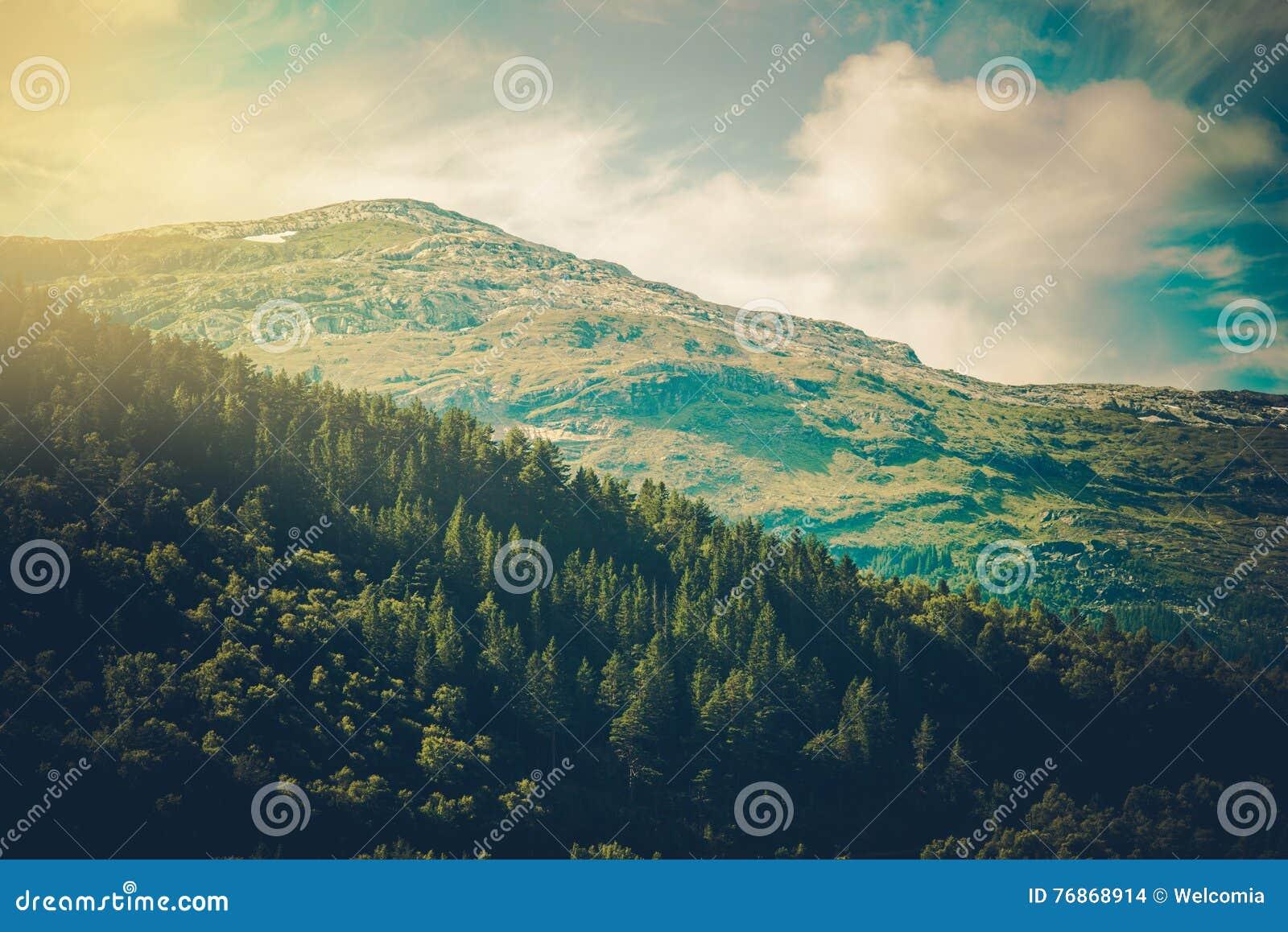 Góra norweski krajobraz