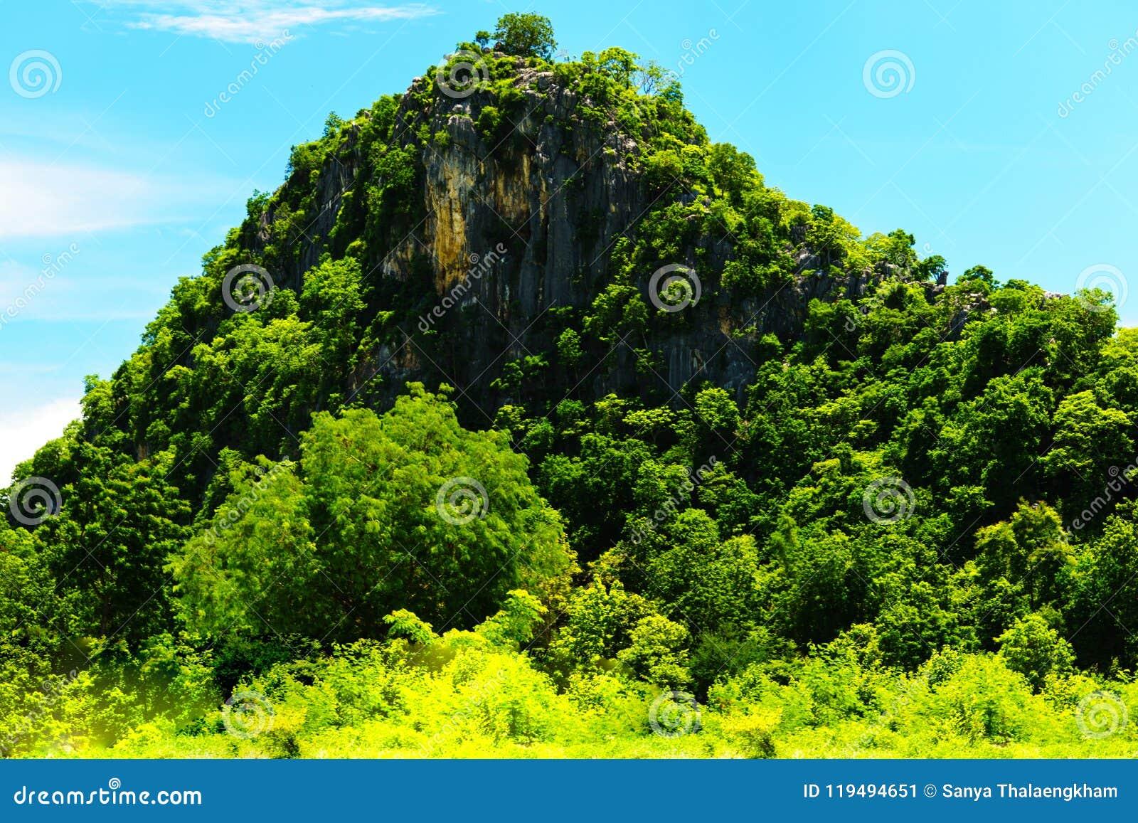 Górom otaczają zbyt zielonych lasy ja jest piękny