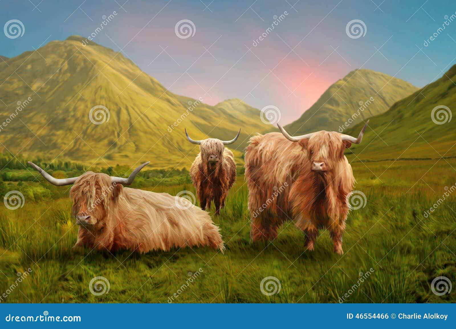 Górskie krowy