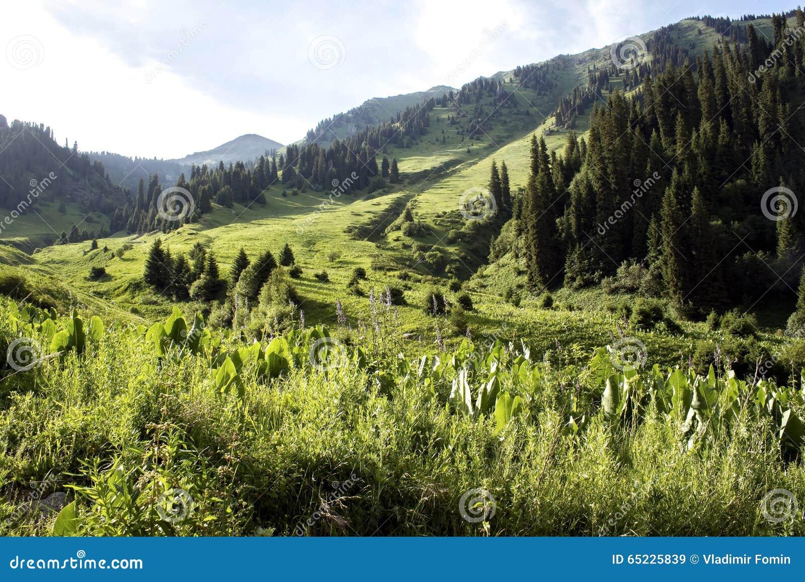 Góry charakteru serii lato