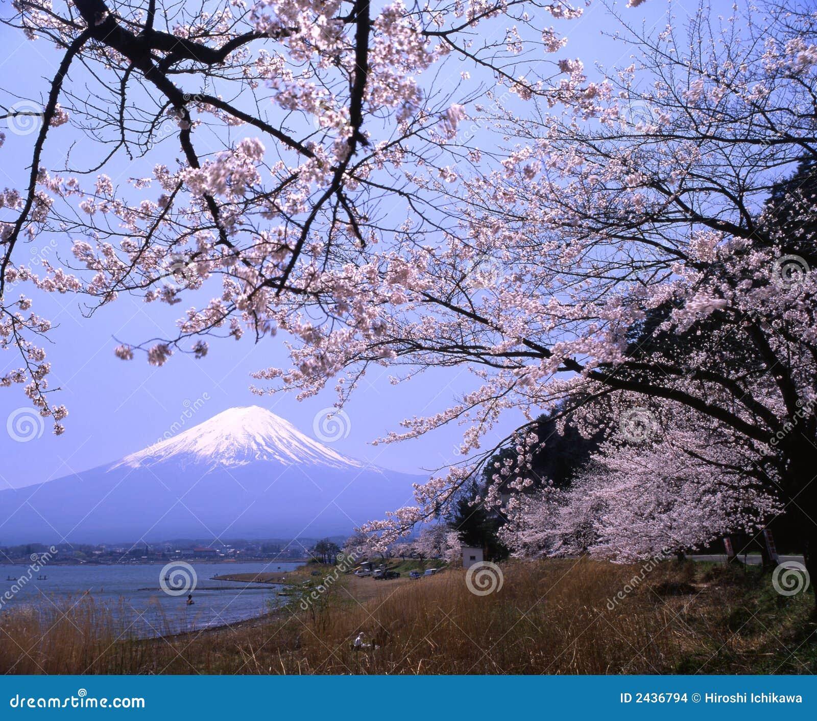 Góry fuji