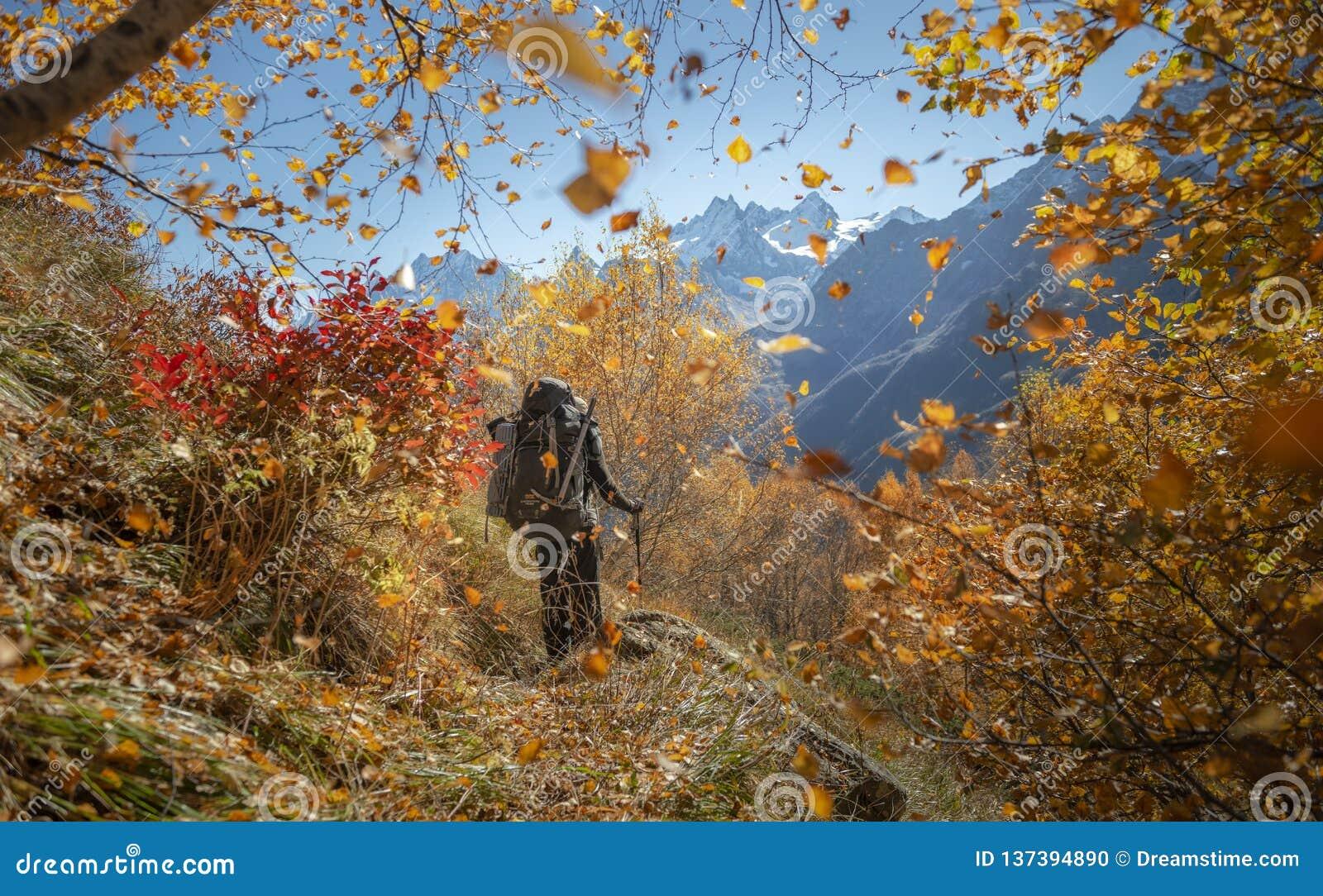 Góry, podróż, natura, jeziora, piękny miejsce
