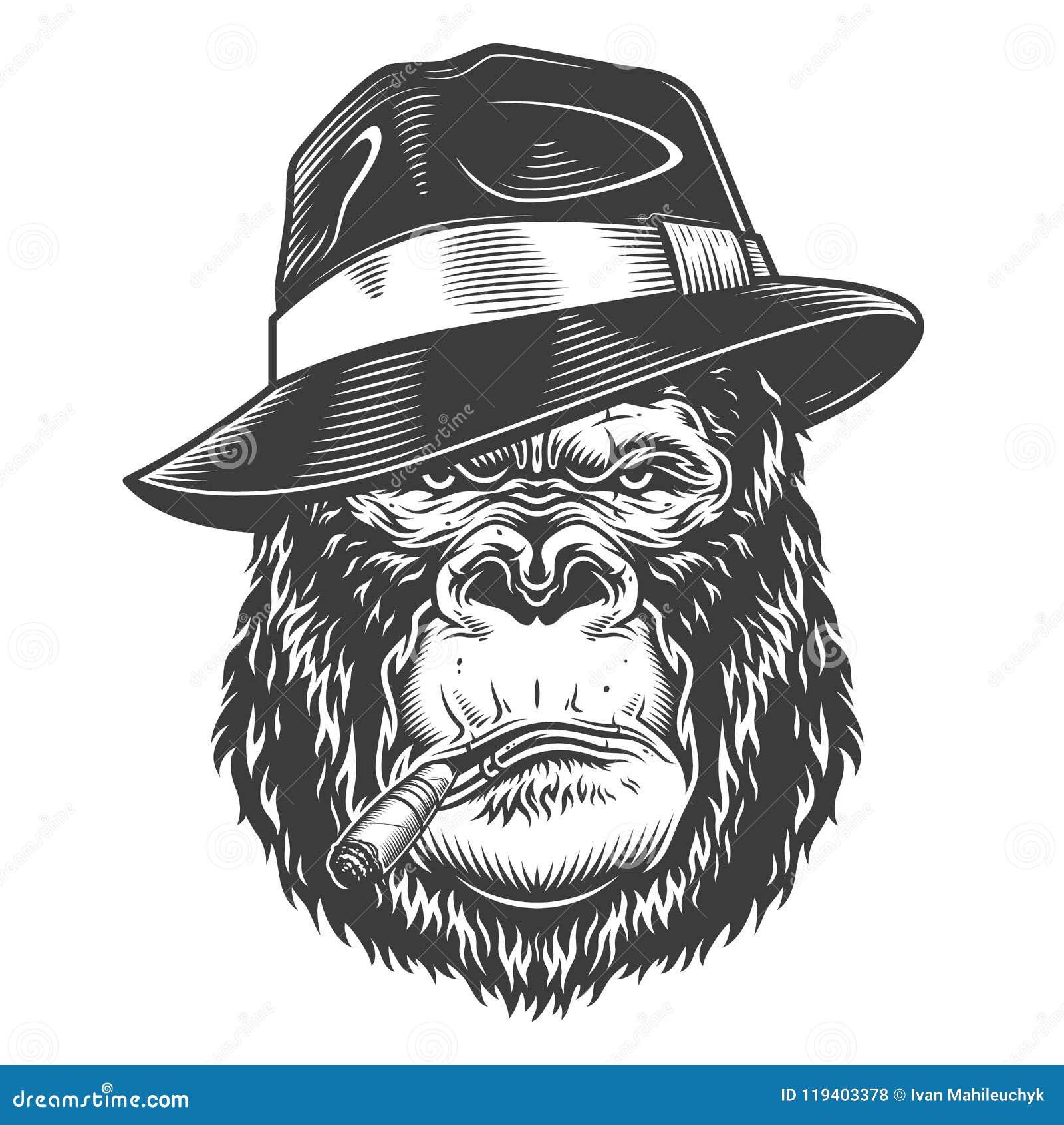 Głowa goryl