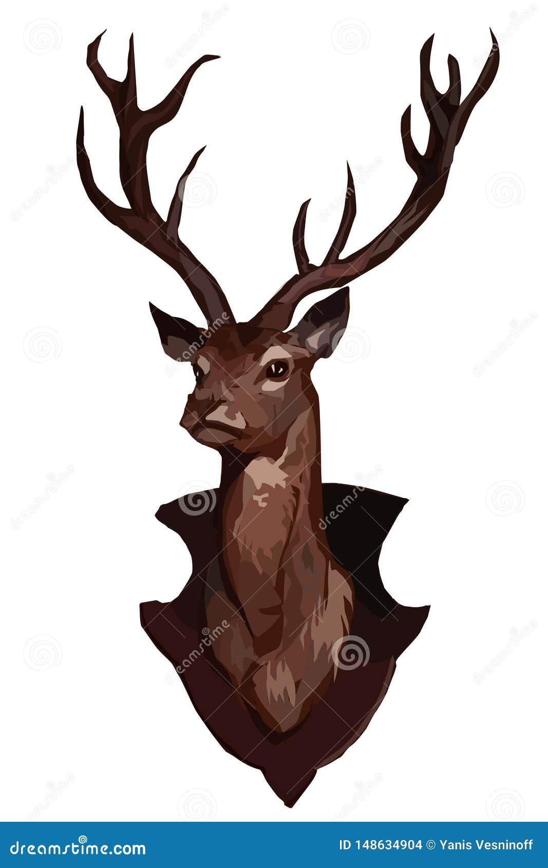 Głowa jeleni wektorowy wizerunek