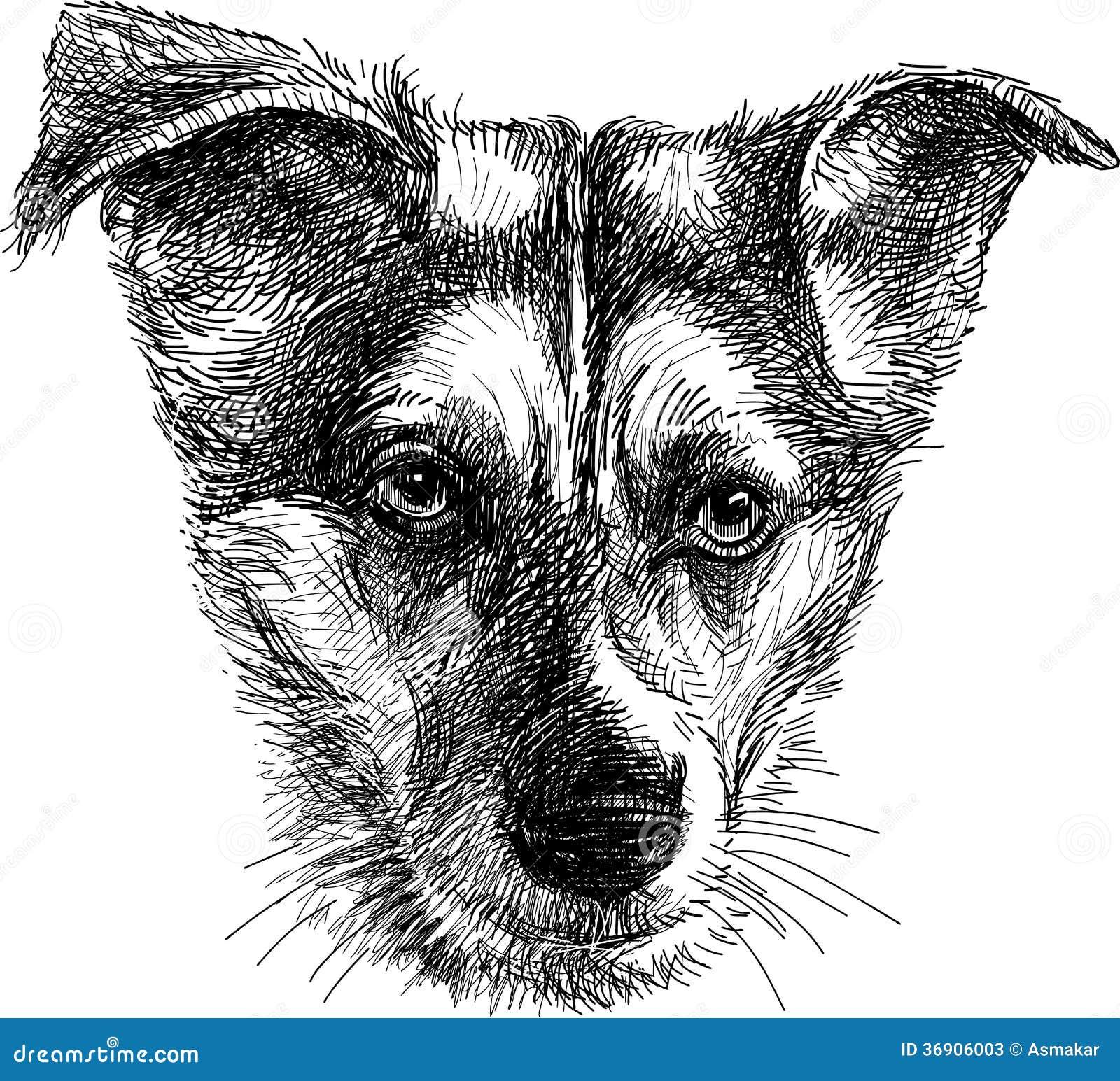 Głowa smutny pies