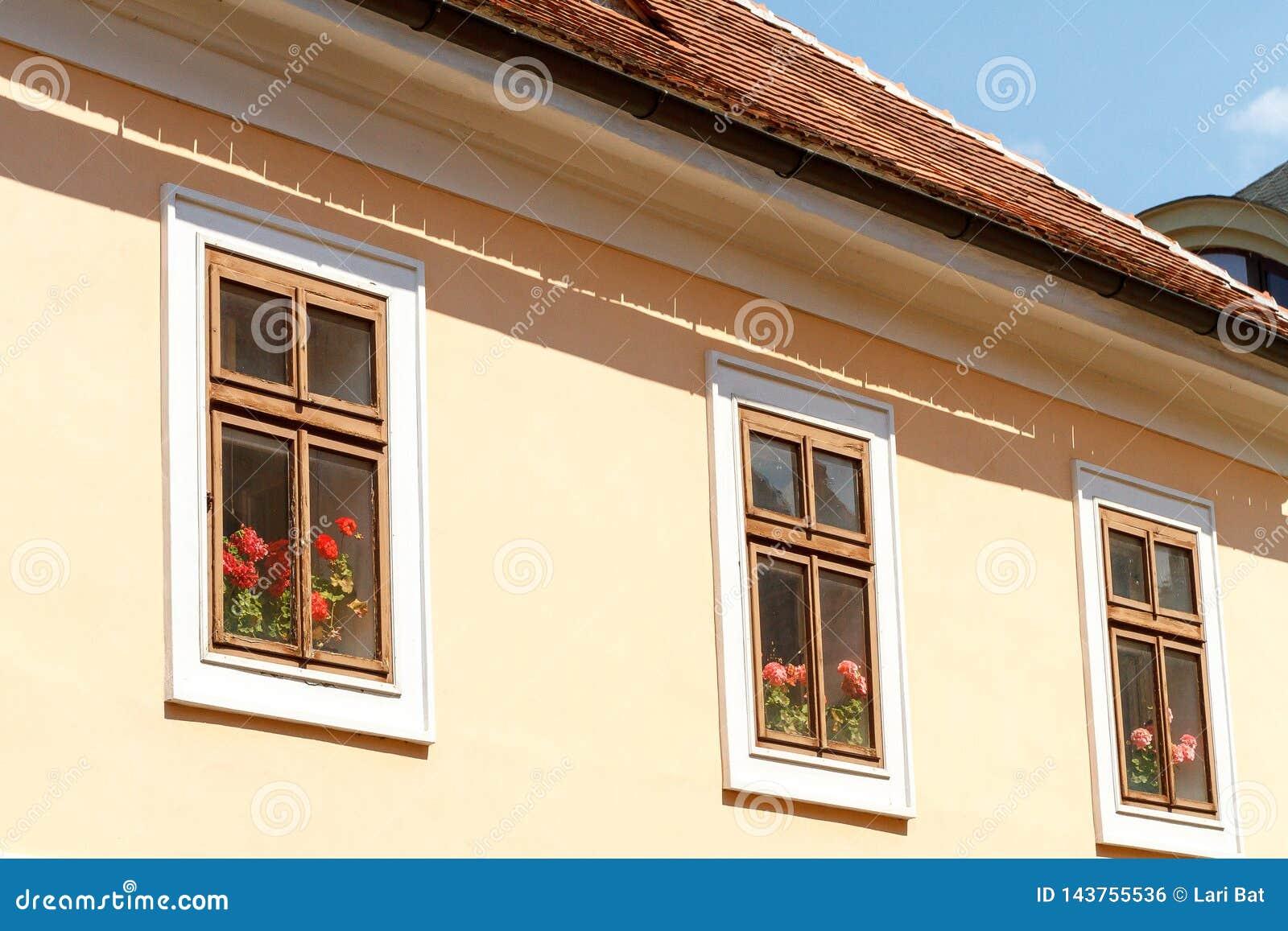 G?ranium derri?re les fen?tres en bois dans une maison avec un toit carrel?
