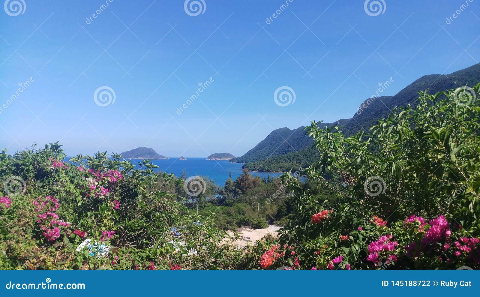 Ga echt van het de aardstrand van het reislandschap het eilandfoto