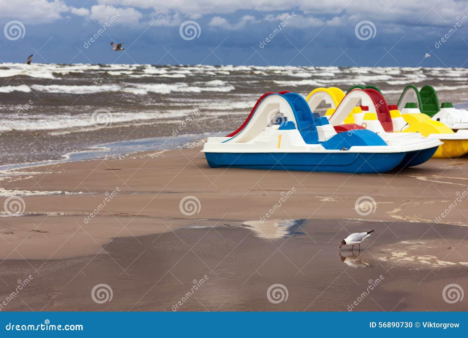 Gabbiani e barche del pedale in una tempesta sul Mar Baltico