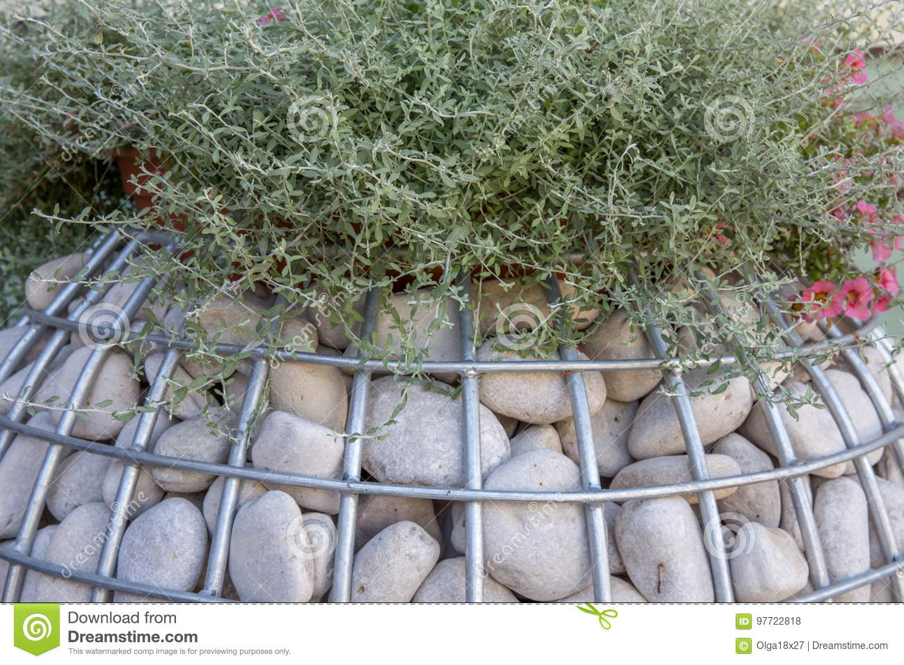 Gabion With A Stone For Planting Ornamental Plants Close Up The