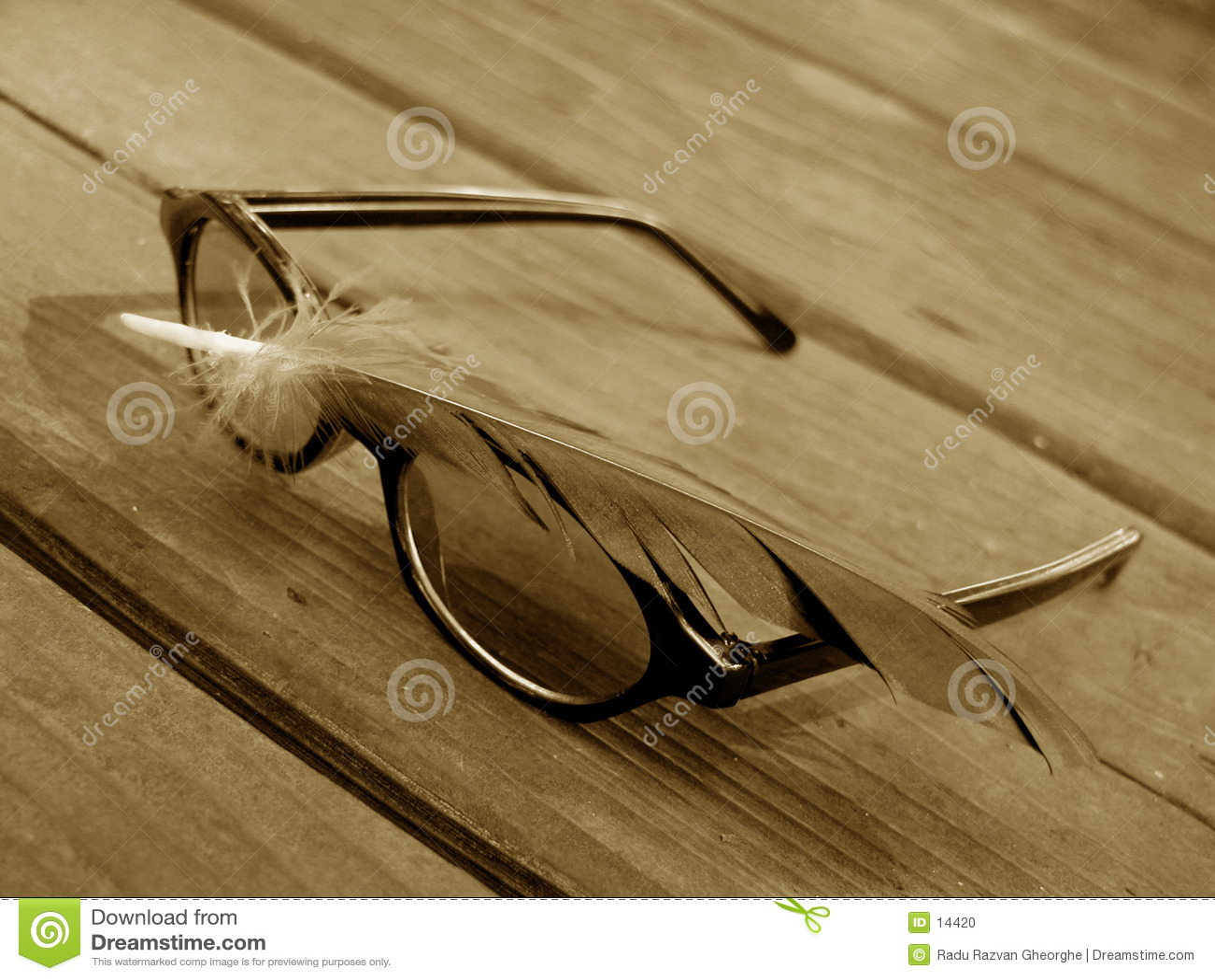 Gafas de sol y pluma 2