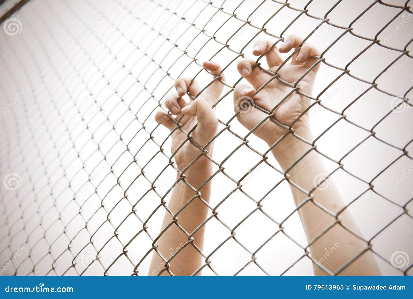Gaiola de travamento da malha da mão O prisioneiro quer a liberdade