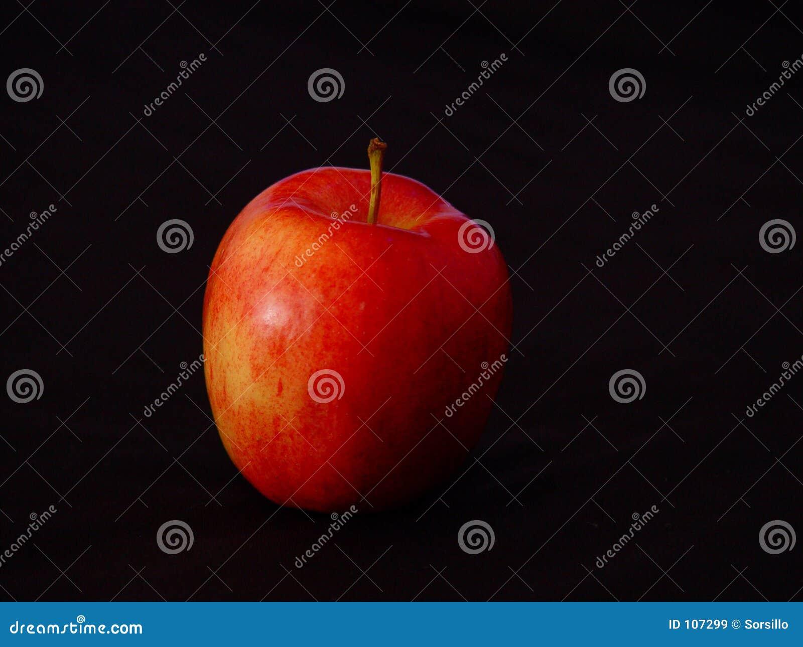 Gala μήλων