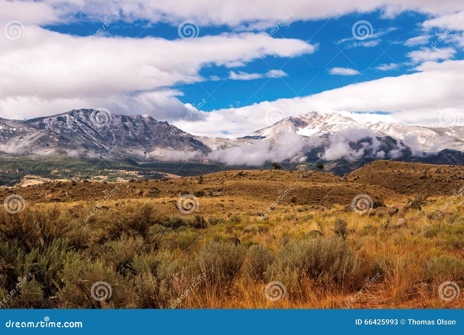 Gallatin mędrzec i góry