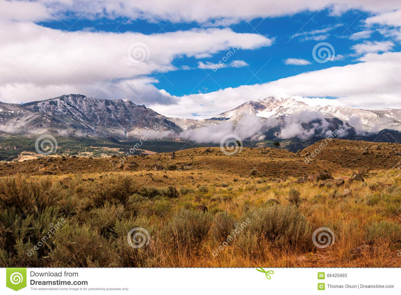 Gallatin Mountains and Sage