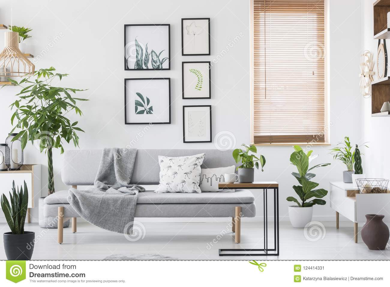 Gallery with plant posters hanging on wall in real photo of bright living room interior with window with wooden blinds and grey so