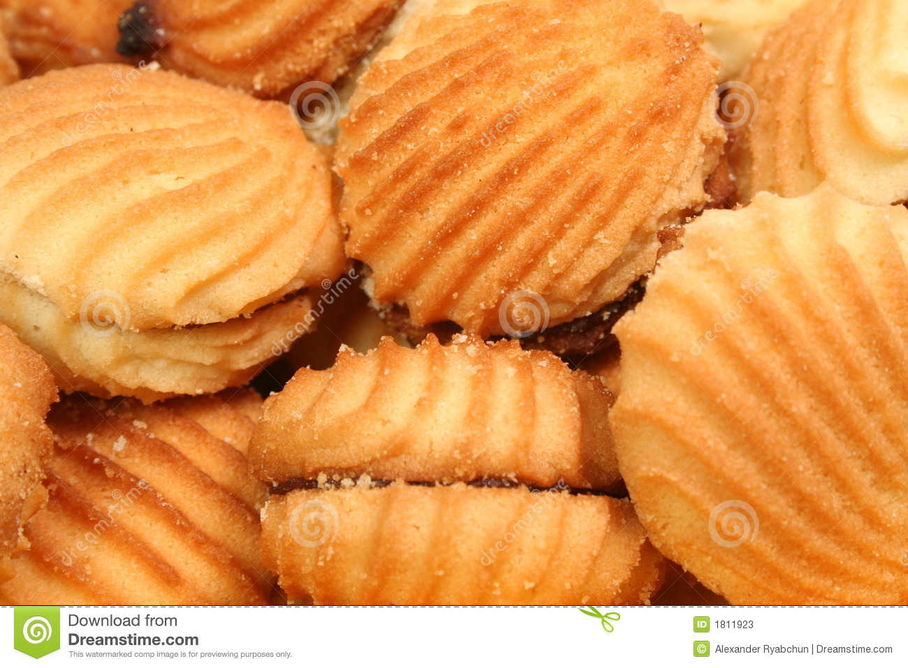 galletas de mar: