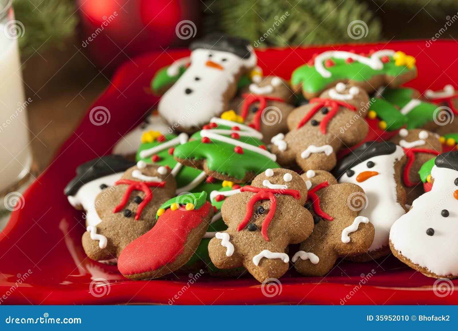 Galletas heladas tradicionales de la Navidad del pan de jengibre