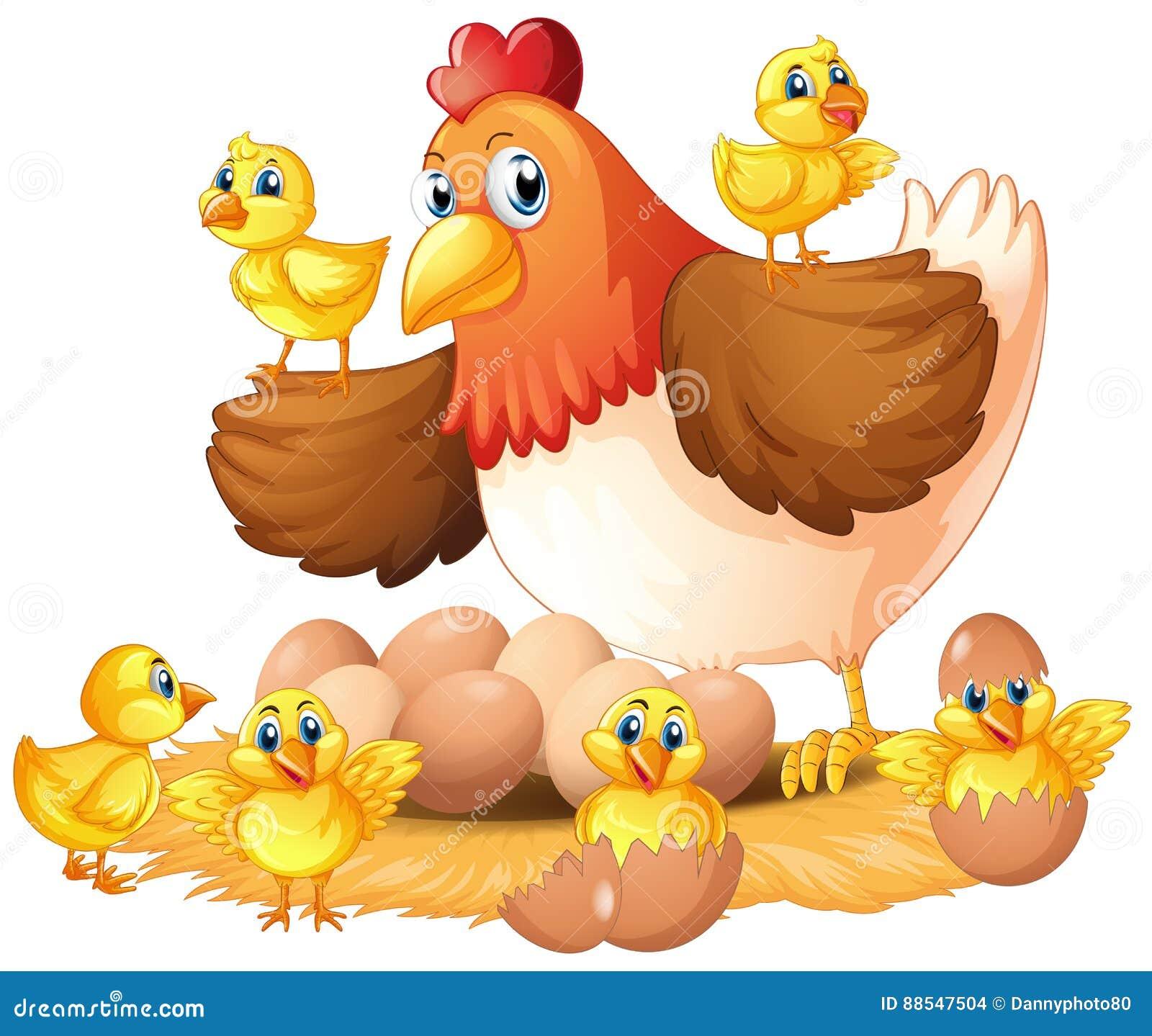 Gallina y polluelos en jerarquía