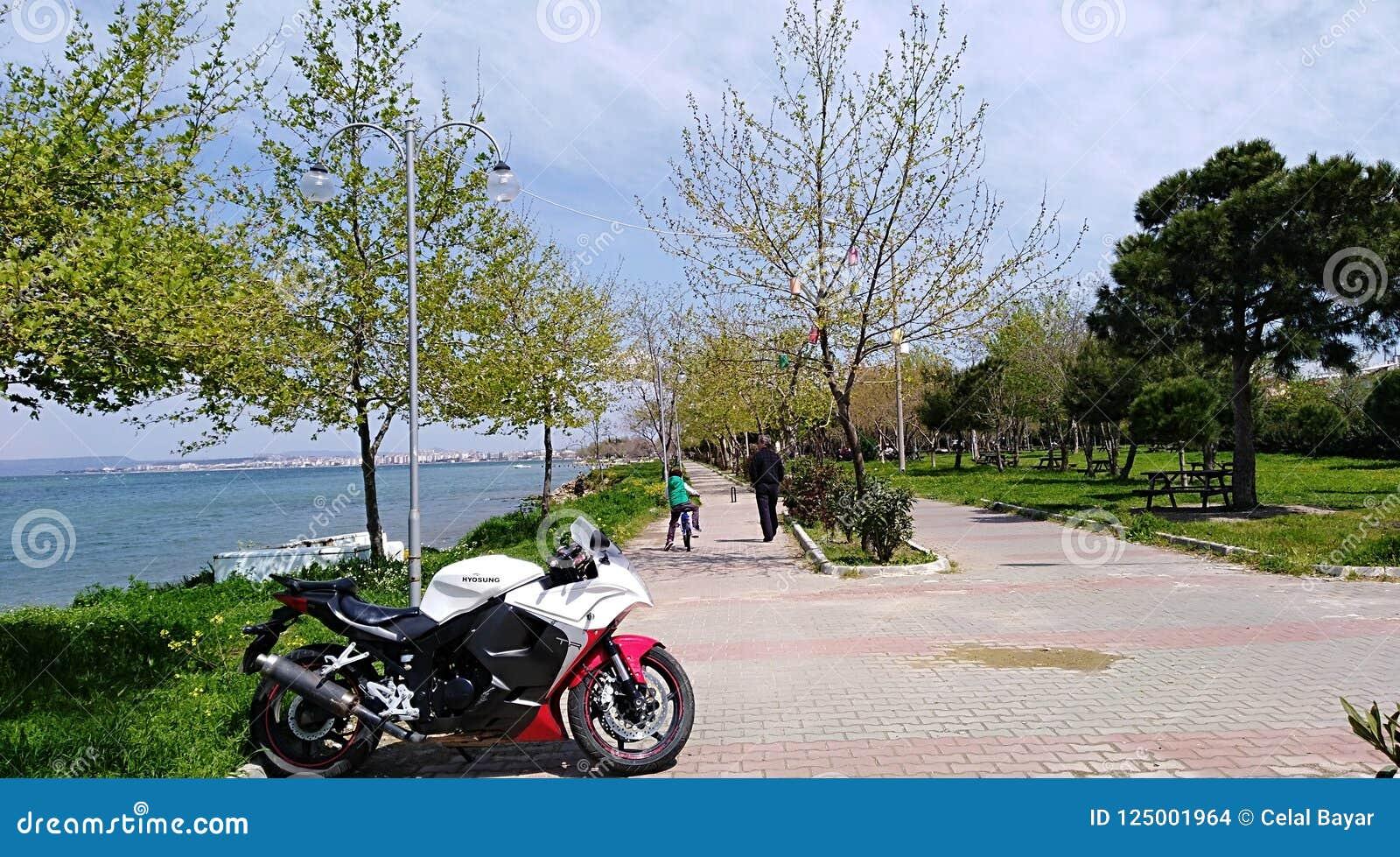 Download Gallipoli Çanakkale editorial stock image. Image of ebru - 125001964