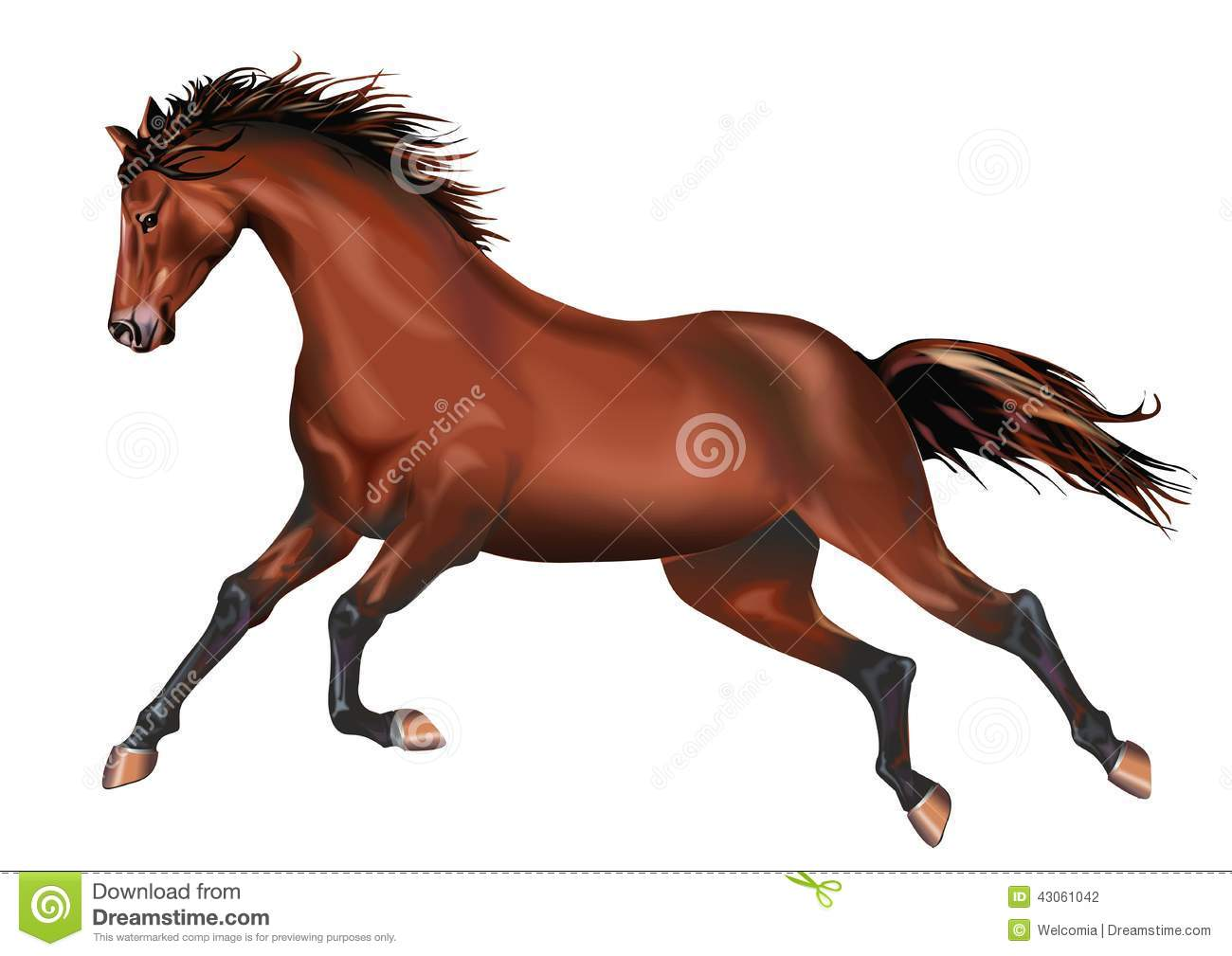 Brown Galloping Wild Horse Illustration Isolated on White Background.