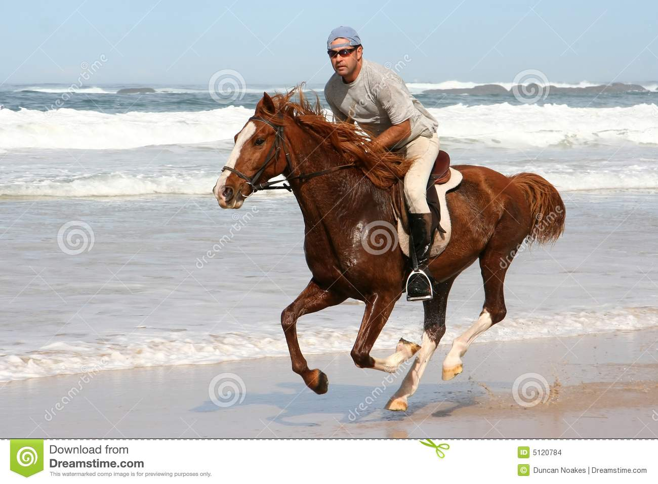 Galloping Horse with Rider stock photo. Image of splash ...