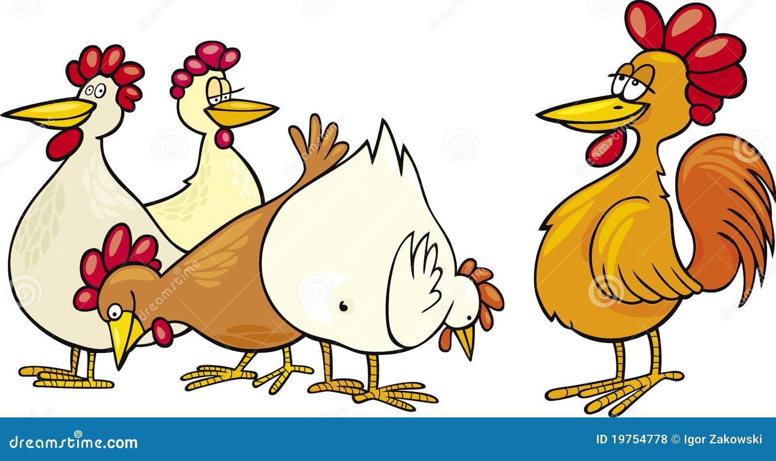 Galo e galinhas fotos de stock royalty free imagem